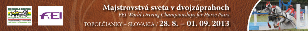 FEI WORLD DRIVING Championship for Pairs 2013